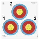 Scheibe 45x45cm mit 3er Ampel im Dreieck angeordnet 1...