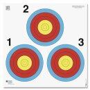 Scheibe 45x45cm mit 3er Ampel im Dreieck angeordnet 10...