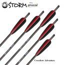 6 Stück 22 Sphere Storm Armbrust Bolzen Carbon